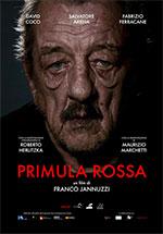 Trailer Primula Rossa