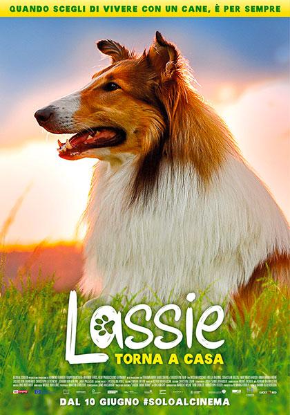 Trailer Torna a casa Lassie
