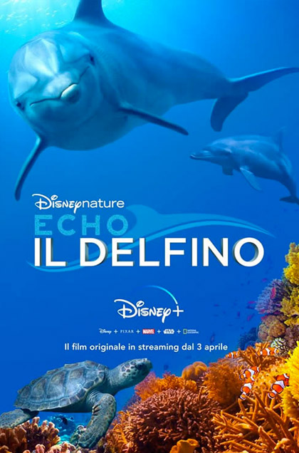 Echo - Il delfino - Film (2019) - MYmovies.it