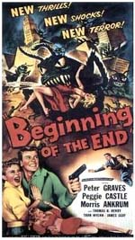 Poster Beginning of the End  n. 0