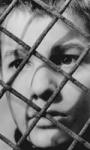Storia 'poconormale' del cinema: il linguaggio e la Nouvelle Vague