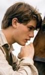 War Horse, storia di una straordinaria amicizia
