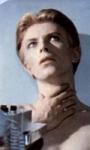 Berlinale 66: un bastimento carico di (belle) promesse