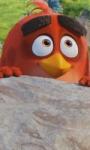 Box office: solo Angry Birds sopra la soglia dei 100mila euro