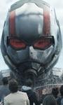 Chi dice che il cinema d'estate non esiste? 1,5mln in 4 giorni per Ant-Man