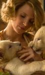 La signora dello zoo di Varsavia, una pagina storica dimenticata nelle mani di Jessica Chastain
