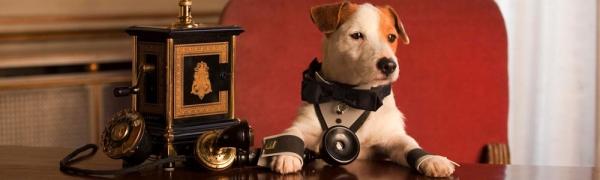 Pongo - Il cane milionario